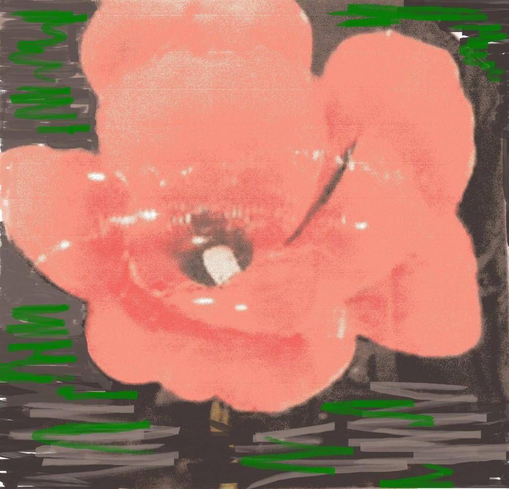 fiore004